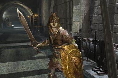 The Elder Scrolls: Blades Guide